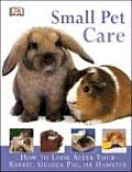Small Pet Care How to Look After Your Rabbit Guinea Pig or Hamster