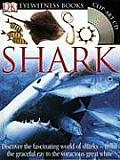 Shark Eyewitness