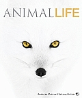 Animal Life (American Museum of Natural History)