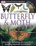 Butterfly & Moth [With CDROM] (DK Eyewitness Books) Cover