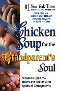 Chicken Soup For The Grandparents Soul