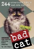 Bad Cat Cover