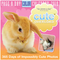 Cute Overload Page-A-Day Calendar Cover