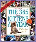 Cal13 365 Kittens A Year 2013 Wall Calendar