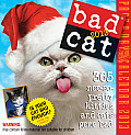 Bad Cat Page-A-Day Calendar