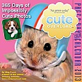 Cal13 Cute Overload Page A Day Calendar
