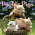 Pocket Pigs 2014 Calendar
