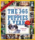 The 365 Puppies-A-Year 2015 Wall Calendar