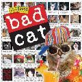 Bad Cat 2015 Wall Calendar