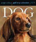 Dog Gallery