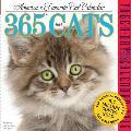365 Cats