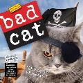 Bad Cat Mini Wall Calendar 2016
