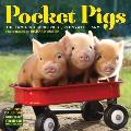 Pocket Pigs Mini Wall Calendar 2016