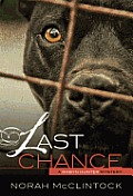 Robyn Hunter Mysteries #01: #1 Last Chance