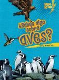 ?Sabes Algo Sobre Aves? = Do You Know about Birds? (Libros Rayo Conoce Los Grupos de Animales)