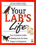 Your Lab's Life: Your Complete Guide to Raising Your Pet from Puppy to Companion (Your Pet's Life)