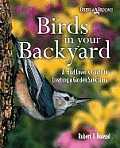 Birds In Your Backyard A Bird Lovers Guide To