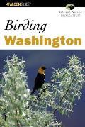 Best Easy Day Hikes Absaroka Beartooth W