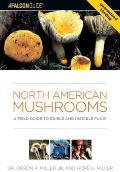 Surfing Hawaii A Complete Guide to the Hawaiian Islands Best Breaks