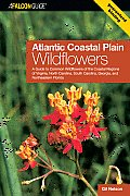 Atlantic Coastal Plain Wildflowers: A Guide to Common Wildflowers of the Coastal Regions of Virginia, North Carolina, South Carolina, Georgia, and Nor (Falcon Guide) Cover
