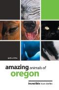 Seasoned Traveler A Guide For Baby Boomers