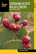 Sonoran Desert Wildflowers: A Field Guide to Common Species of the Sonoran Desert, Including Anza-Borrego Desert State Park, Saguaro National Park