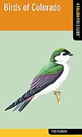 Birds of Colorado (Falcon Field Guide)