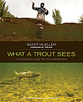 What a Trout Sees A Fly Fishing Guide to Life Underwater