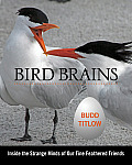 Bird Brains Inside the Strange Minds of Our Fine Feathered Friends