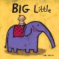Big Little Cover