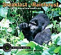 Breakfast in the Rainforest: A Visit with Mountain Gorillas