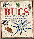 Bugs: A Stunning Pop-Up Look at Insects, Spiders, and Other Creepy-Crawlies