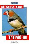 All about Your Finch (All about Your--)