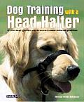 Dog Training With A Head Halter