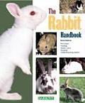 The Rabbit Handbook: Purchase, Care, and Breeding, Understanding Rabbit Behavior (Barron's Pet Handbooks)