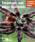 Tarantulas & Other Arachnids Everything