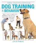 Dog Training & Behavior