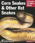 Corn Snakes & Other Rat Snakes Everything about Acquiring Hosuing Health & Breeding