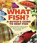 What Fish A Buyers Guide To Reef Fish