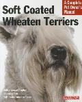 Soft Coated Wheaten Terriers: Everything about Selection, Care, Nutrition, Behavior, and Training
