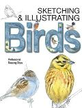 Sketching & Illustrating Birds Professional Drawing Class