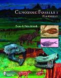 Cenozoic Fossils 1: Paleogene