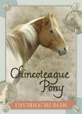 Chincoteague Pony Identification Cards