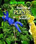 Peeking at Plants with a Scientist