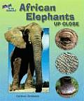 African Elephants Up Close (Zoom in on Animals!) Cover