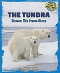 The Tundra: Discover This Frozen Biome