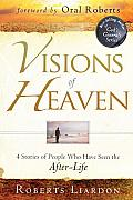 Visions of Heaven 4 Stories of People Who Have Seen the After Life
