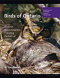 Birds of Ontario: Habitat Requirements, Limiting Factors, and Status: Nonpasserines: Shorebirds through Woodpeckers