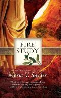 Fire Study Study 03