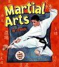Martial Arts In Action
